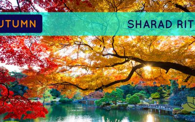 Get Super tips For the Coming Autumn / Sharad Ritu